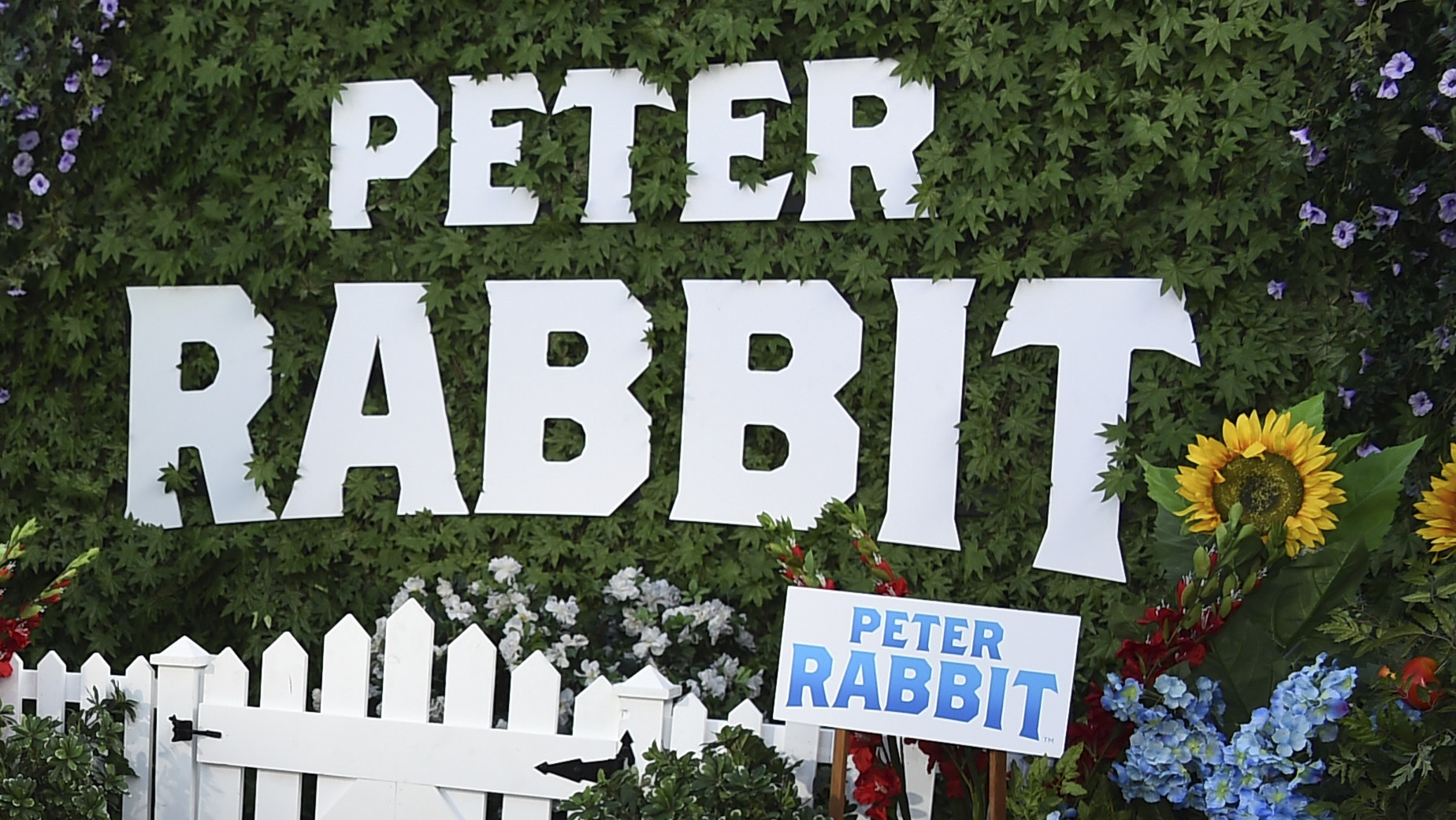 Peter Rabbit in hot water over claims of 'allergy bullying'