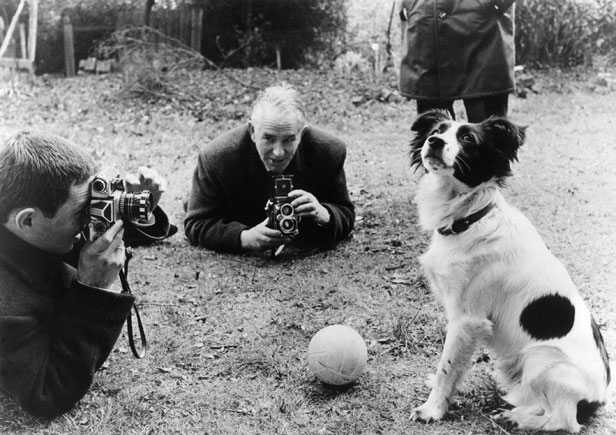 Pickles the dog became a national celebrity when he found the stolen trophy under a bush.