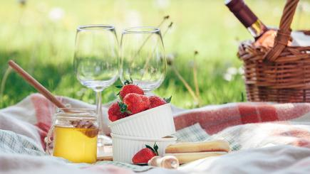 9 essential picnic items everyone should pack