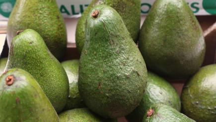 Hand injuries involving avocados prompt medical group's call for safety labels