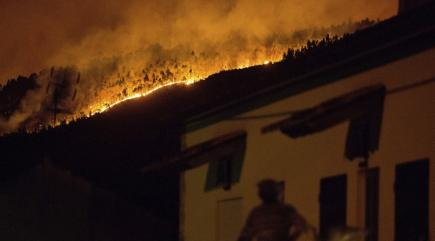 Portugal in mourning as over 60 people killed in raging forest fires