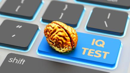 Yellow brain sat on 'IQ Test' button on keyboard