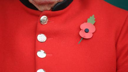 Remembrance Day: how to wear a poppy correctly