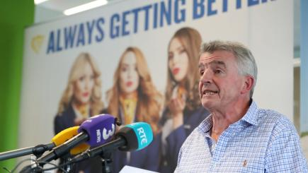 Calls for Ryanair to publish all flight cancellations as frustration grows