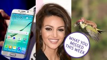Samsung Galaxy S6, Michelle Keegan and weasel riding woodpecker