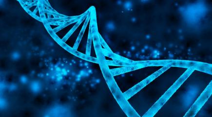 Scientists create a new organism using synthetic DNA, paving the way for artificial life forms