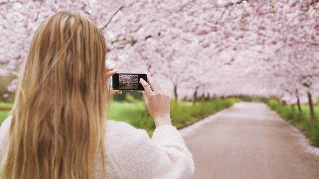 Send video messages to your loved ones after death - BT