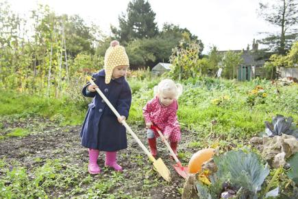 Six ways to save your garden this winter
