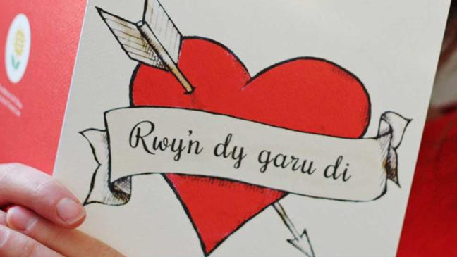 Forget Valentines say I love you the Welsh way on St – What to Say in a Valentines Day Card