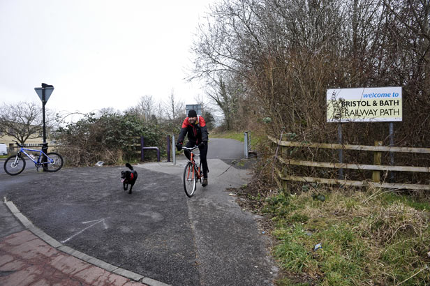 A cyclist on the Bristol & Bath railway path, opened in 1986 on the site of the closed Midland Railway.