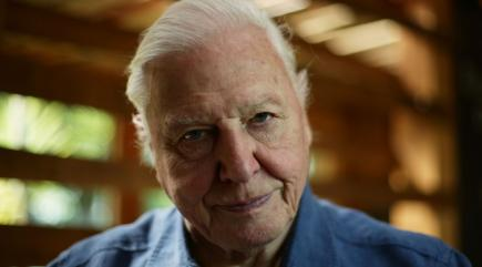 Attenborough: Too many lifestyle shows on TV