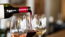Video: Learn how to blag your way through wine tasting with this beginner's crash course