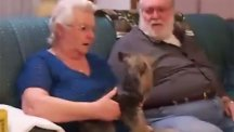 Watch heartwrenching moment grieving mum receives new puppy for Christmas