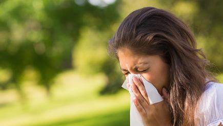 What's the difference between hay fever and a sinus infection?