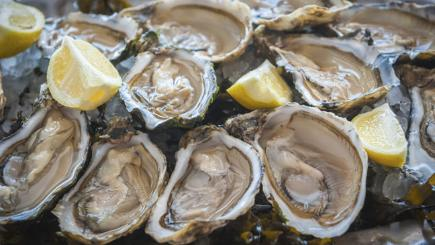 Seafood superfoods: Which are the best to eat?