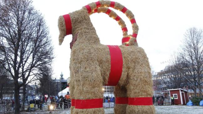 swedens christmas goat burns within hours - Giant Christmas Hours