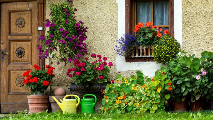 10 front garden mistakes to avoid | BT