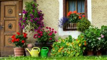 A front garden in Italy.  Photo credit: Design Pics Inc/REX/Shutterstock