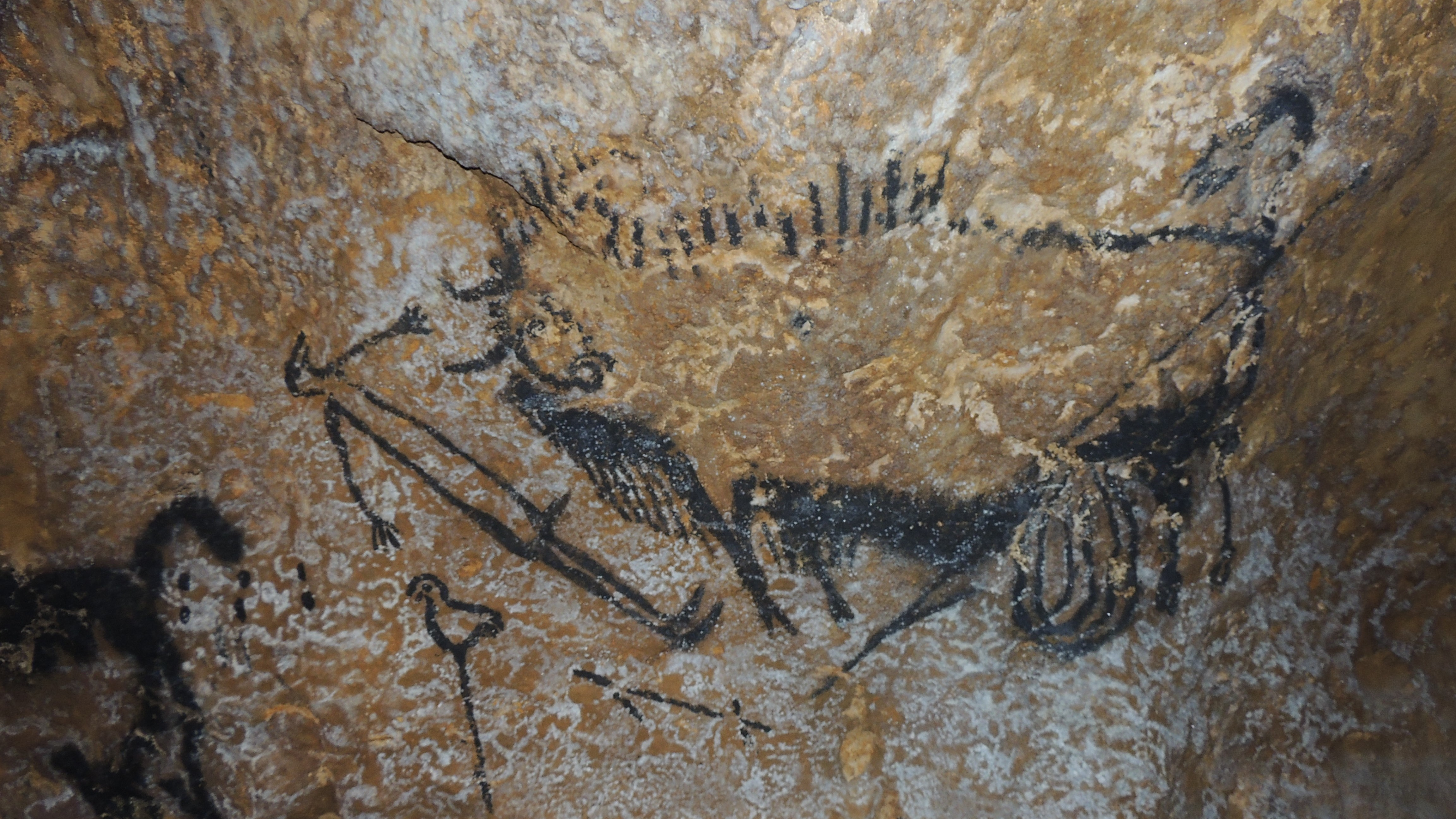 Stone Age Cave Art Drawing