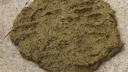 Dung Cakes Online