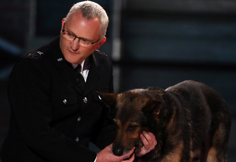 Dave Wardell and Finn the dog on Britain's Got Talent
