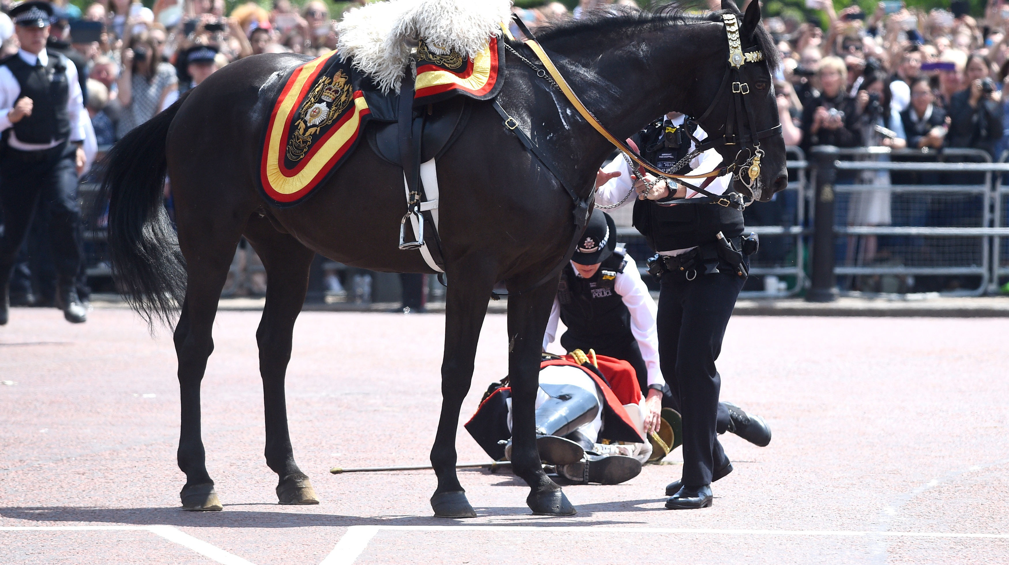 Former Forces Chief Lord Guthrie Falls Off Horse After