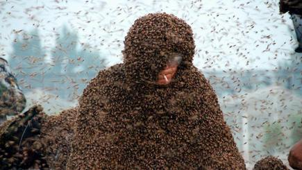 Chinese beekeeper Gao Bingguo fully covered with bees