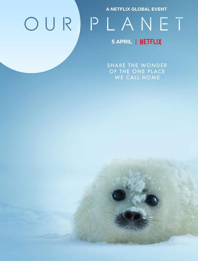 Our Planet on Netflix