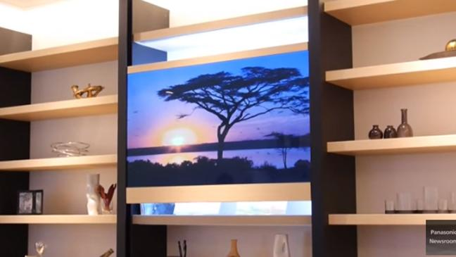 Panasonic Tv In Front Of Bookshelves With Tree On The