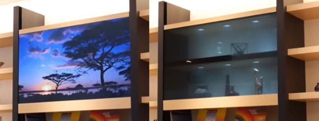 Two Panasonic Tvs In Front Of Bookshelves One With Tree And Transpa