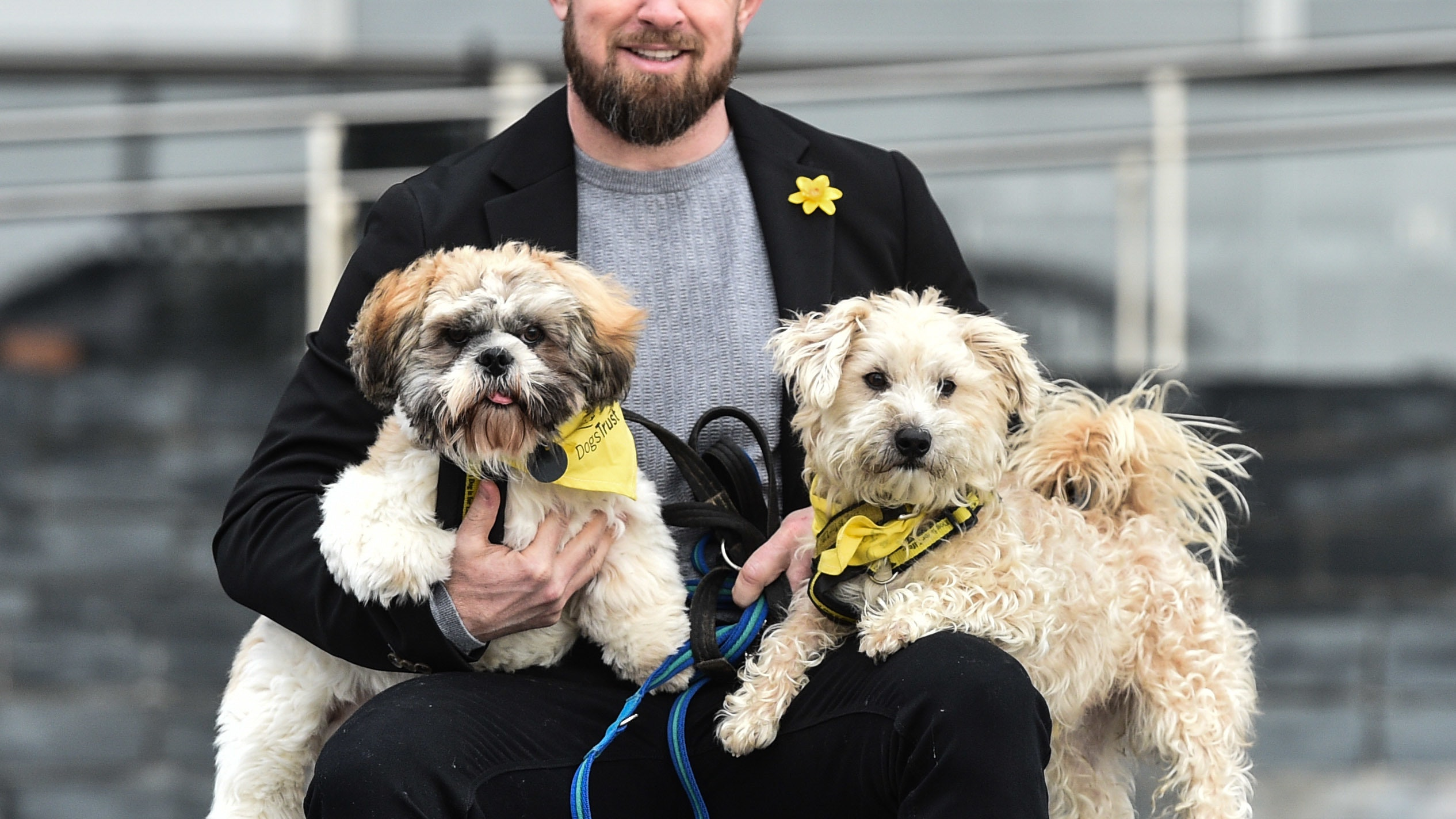 Rugby Star Shane Williams Meets Rescue Dogs At The Senedd Bt