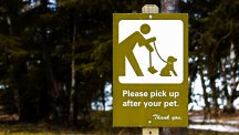 Some people in New York just committed a major faux-pas involving dog poo
