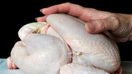 The Food Standards Agency has released results from testing of whole chickens bought from UK outlets, smaller independent stores and butchers
