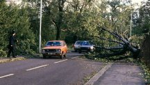 Trees lie across a road after winds reach 122mph in parts of southern England.