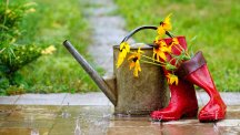 Wellies and watering can
